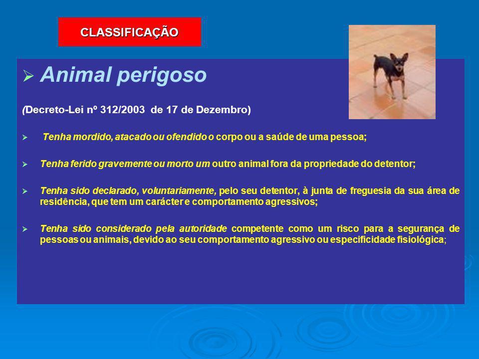   Animal perigoso (Decreto-Lei nº 312/2003 de 17 de Dezembro)   Tenha mordido, atacado ou ofendido o corpo ou a saúde de uma pessoa;   Tenha fer