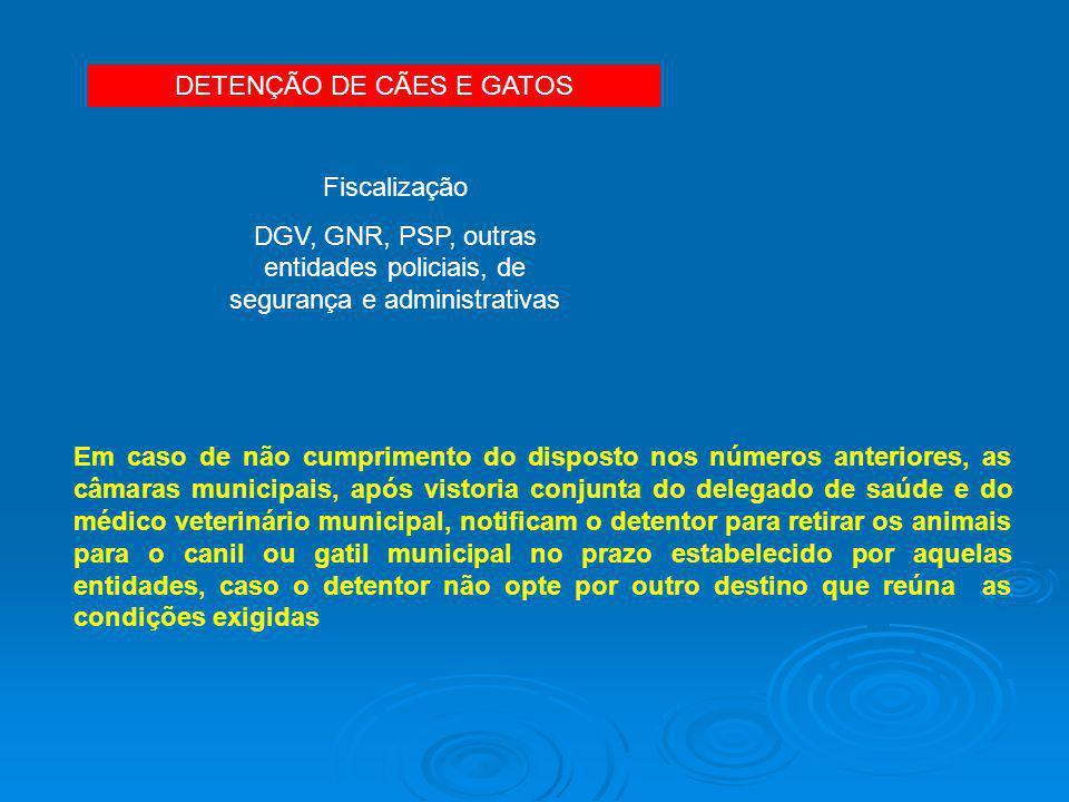 DETENÇÃO DE CÃES E GATOS Fiscalização DGV, GNR, PSP, outras entidades policiais, de segurança e administrativas Em caso de não cumprimento do disposto