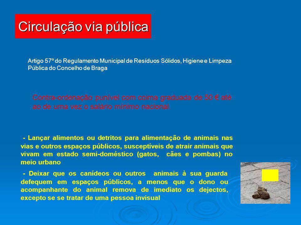 Circulação via pública Artigo 57º do Regulamento Municipal de Resíduos Sólidos, Higiene e Limpeza Pública do Concelho de Braga Contra-ordenação puníve
