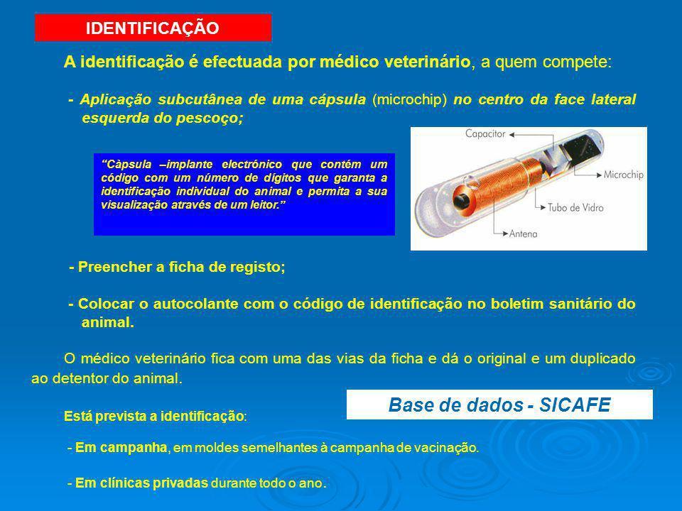 A identificação é efectuada por médico veterinário, a quem compete: - Aplicação subcutânea de uma cápsula (microchip) no centro da face lateral esquer