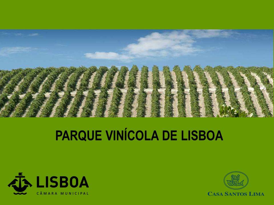 PARQUE VINÍCOLA DE LISBOA