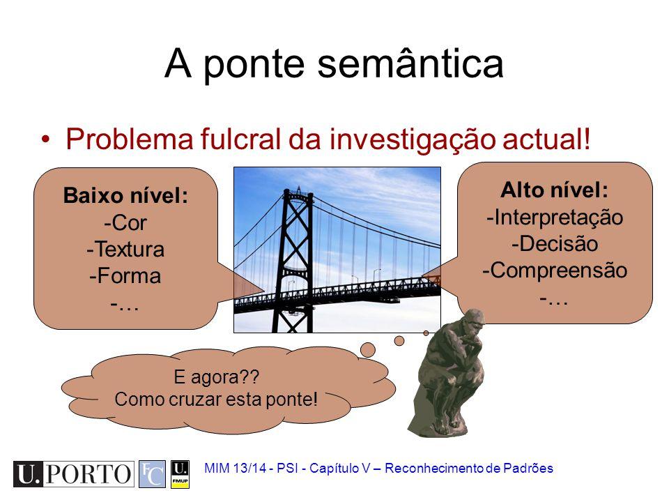 MIM 13/14 - PSI - Capítulo V – Reconhecimento de Padrões A ponte semântica Problema fulcral da investigação actual! Baixo nível: -Cor -Textura -Forma