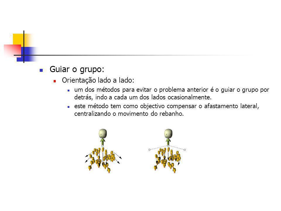 Guiar o grupo: Orientação lado a lado: um dos métodos para evitar o problema anterior é o guiar o grupo por detrás, indo a cada um dos lados ocasionalmente.