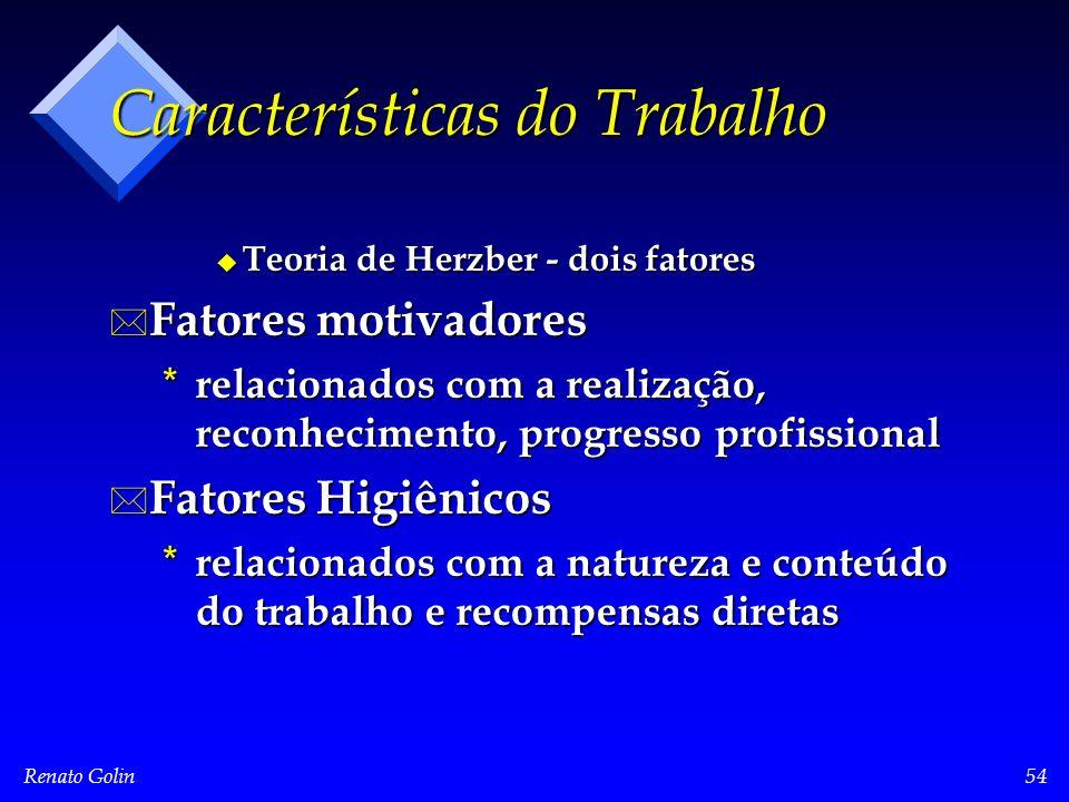 Renato Golin54 Características do Trabalho u Teoria de Herzber - dois fatores * Fatores motivadores * relacionados com a realização, reconhecimento, p