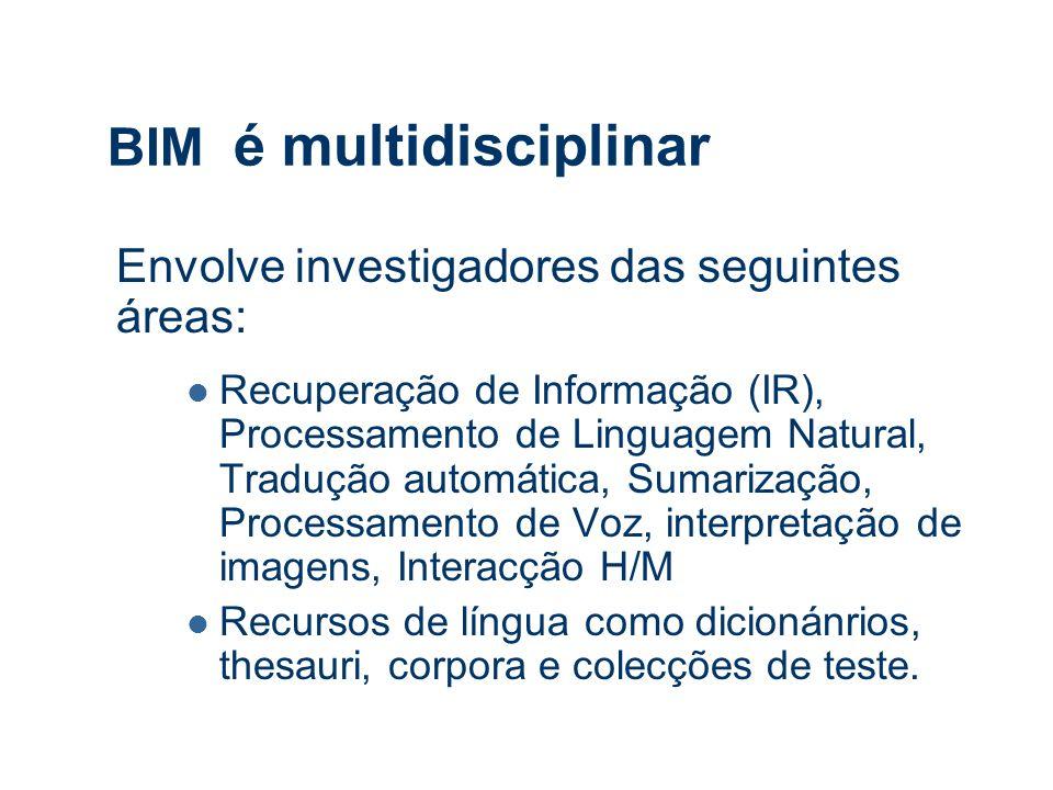 BIM é multidisciplinar Envolve investigadores das seguintes áreas: Recuperação de Informação (IR), Processamento de Linguagem Natural, Tradução automática, Sumarização, Processamento de Voz, interpretação de imagens, Interacção H/M Recursos de língua como dicionánrios, thesauri, corpora e colecções de teste.