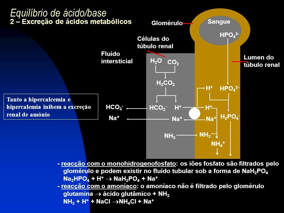 Equilíbrio de ácido/base 2 – Excreção de ácidos metabólicos - reacção com o monohidrogenofosfato: os iões fosfato são filtrados pelo glomérulo e podem