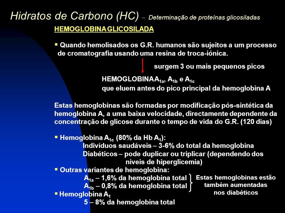 Hidratos de Carbono (HC) – Determinação de proteínas glicosiladas HEMOGLOBINA GLICOSILADA  Quando hemolisados os G.R. humanos são sujeitos a um proce