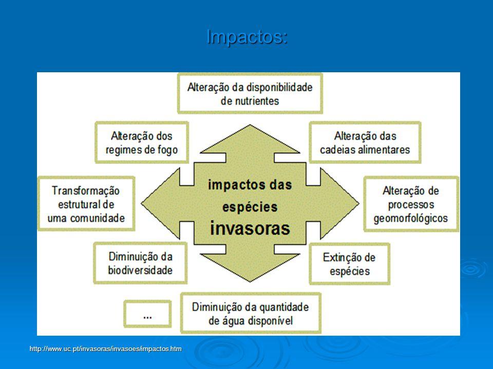 Impactos: http://www.uc.pt/invasoras/invasoes/impactos.htm