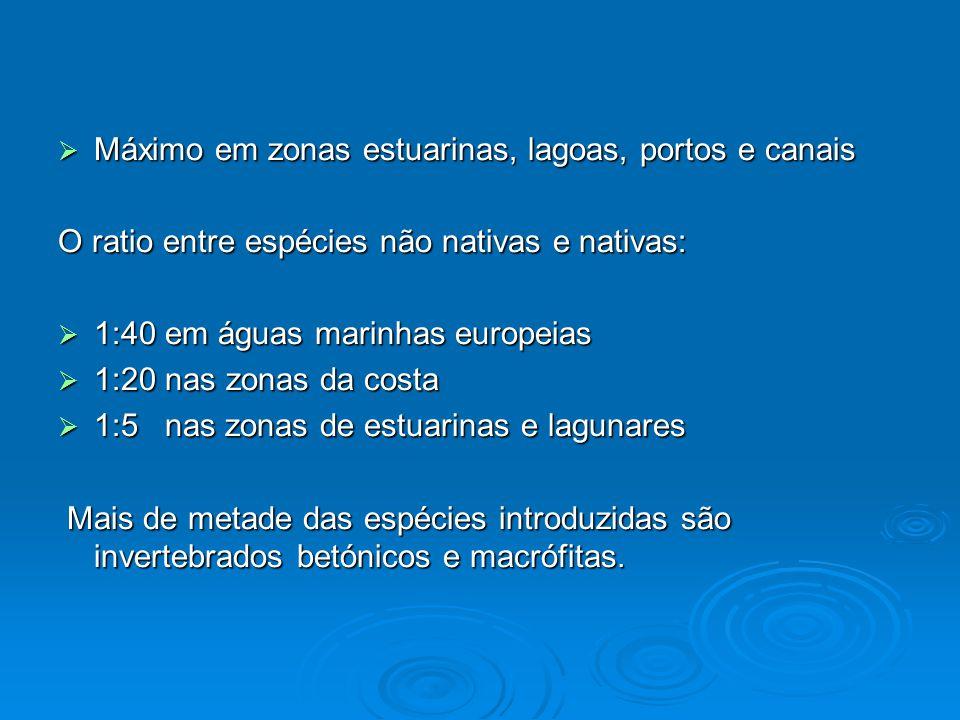  Máximo em zonas estuarinas, lagoas, portos e canais O ratio entre espécies não nativas e nativas:  1:40 em águas marinhas europeias  1:20 nas zona