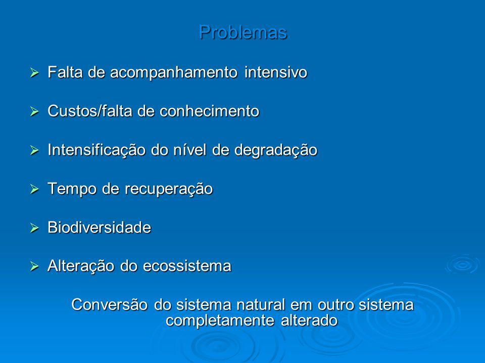 Problemas  Falta de acompanhamento intensivo  Custos/falta de conhecimento  Intensificação do nível de degradação  Tempo de recuperação  Biodiver