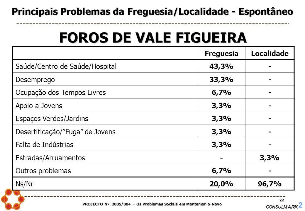 PROJECTO Nº. 2005/004 – Os Problemas Sociais em Montemor-o-Novo 22 FreguesiaLocalidade Saúde/Centro de Saúde/Hospital43,3%- Desemprego33,3%- Ocupação