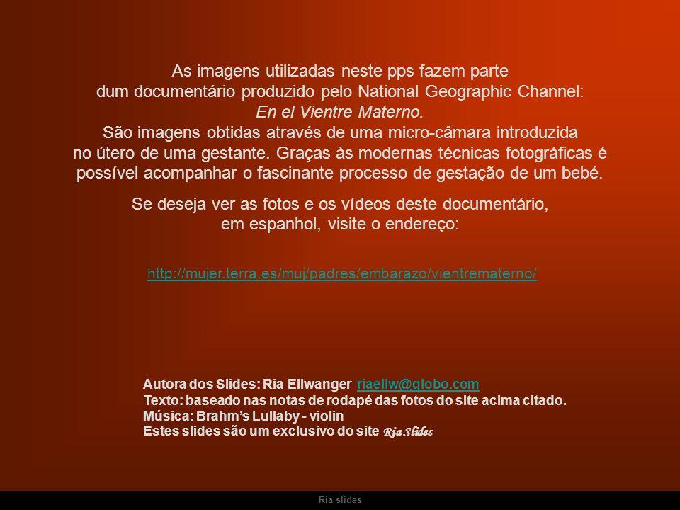 http://mujer.terra.es/muj/padres/embarazo/vientrematerno/ As imagens utilizadas neste pps fazem parte dum documentário produzido pelo National Geographic Channel: En el Vientre Materno.