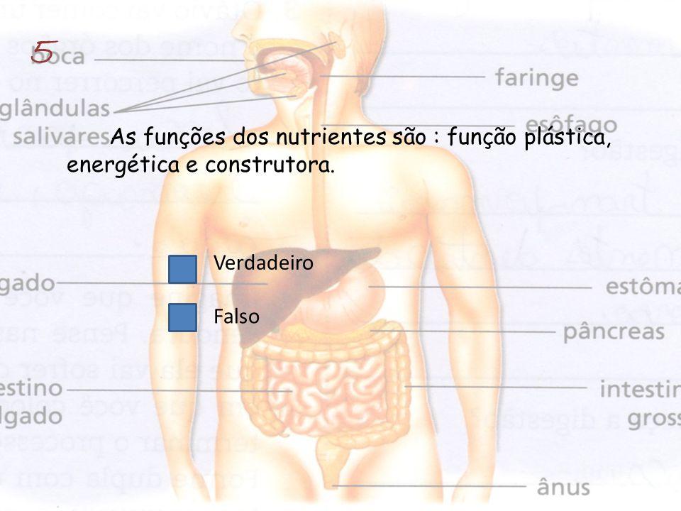 As funções dos nutrientes são : função plástica, energética e construtora. Verdadeiro Falso 5