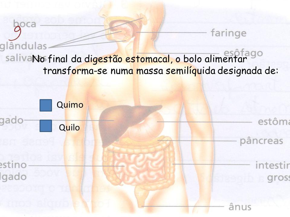 No final da digestão estomacal, o bolo alimentar transforma-se numa massa semilíquida designada de: 9 Quilo Quimo