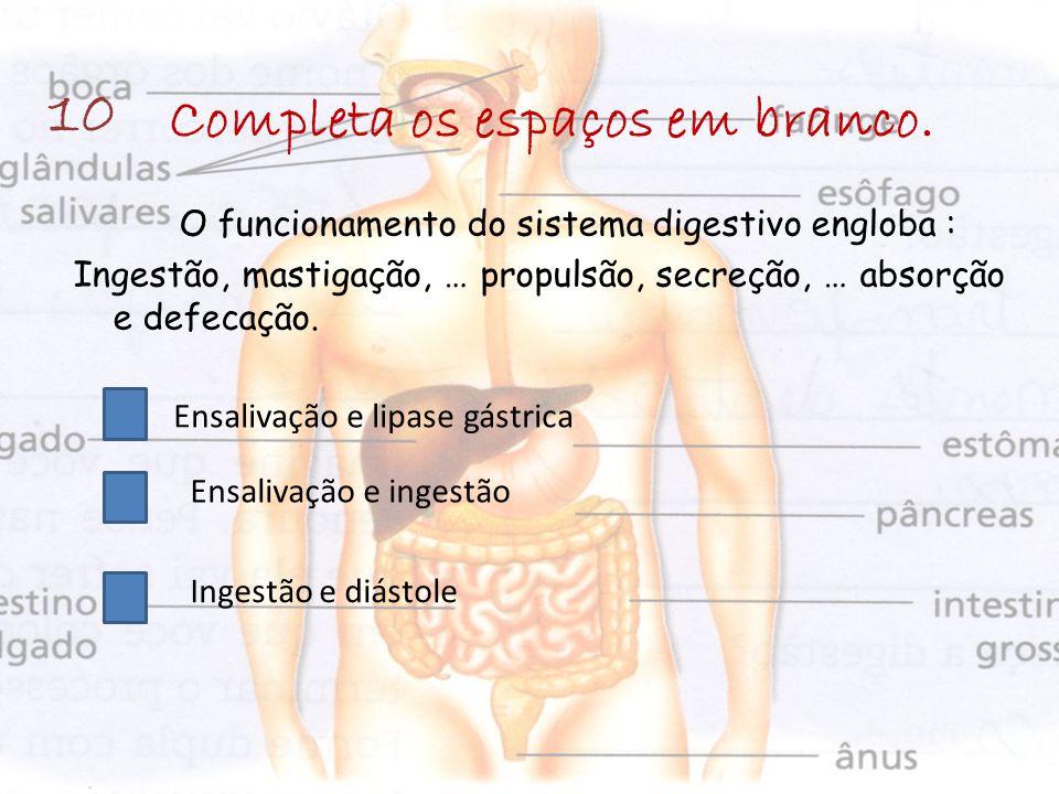 Completa os espaços em branco. O funcionamento do sistema digestivo engloba : Ingestão, mastigação, … propulsão, secreção, … absorção e defecação. 10