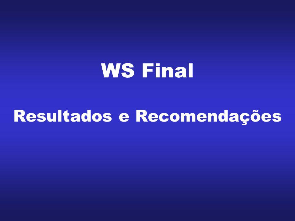 WS Final Resultados e Recomendações