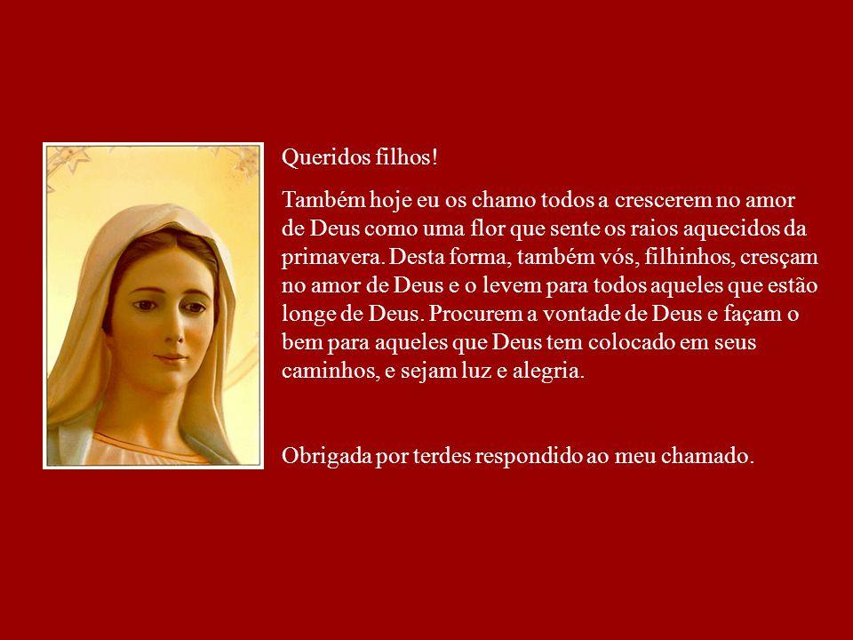 Mensagem de Nossa Senhora à Marija Pavlovic - Lunetti Medjugorje – 25 de abril de 2008