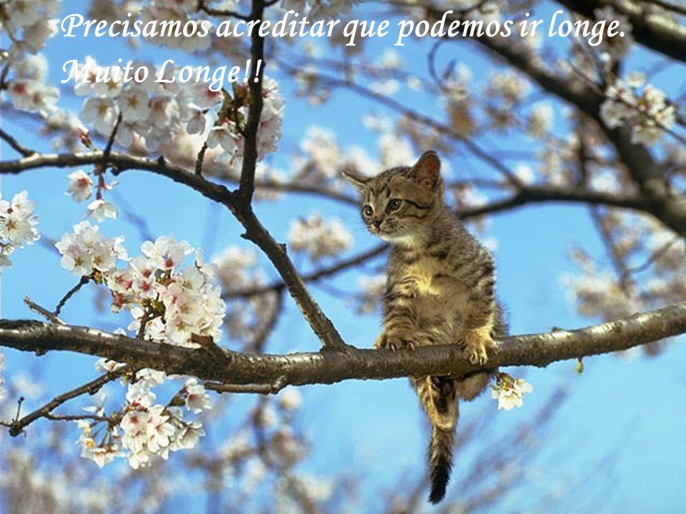 http://www.wmnett.com.br Saiba que qualquer dificuldade e tristeza, suportaremos juntos...