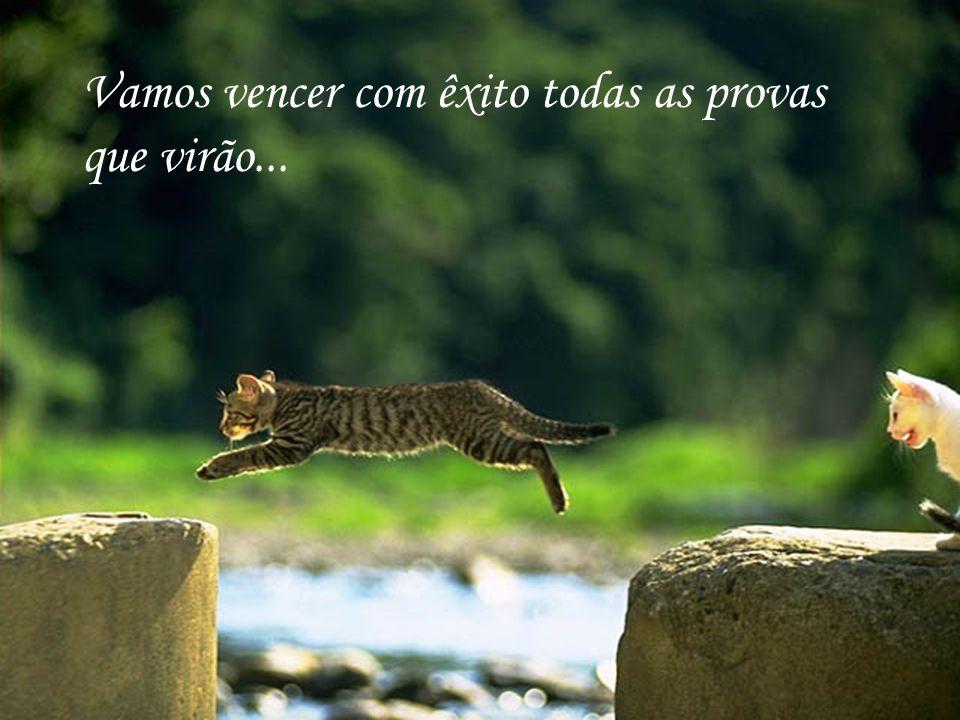 http://www.wmnett.com.br Façamos o caminho sempre juntos, pois podemos precisar de ajuda...