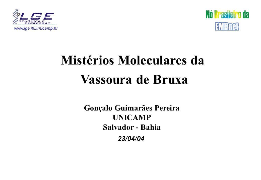 www.lge.ibi.unicamp.br Mistérios Moleculares da Vassoura de Bruxa Gonçalo Guimarães Pereira UNICAMP Salvador - Bahia 23/04/04