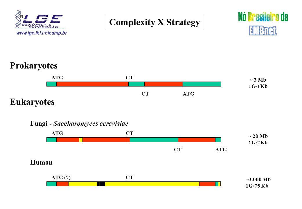 www.lge.ibi.unicamp.br Complexity X Strategy Prokaryotes Eukaryotes Fungi - Saccharomyces cerevisiae Human ATGCT ATGCT ATGCT ATGCT ~ 3 Mb 1G/1Kb ~ 20 Mb 1G/2Kb ~3.000 Mb 1G/75 Kb ATG (?)CT