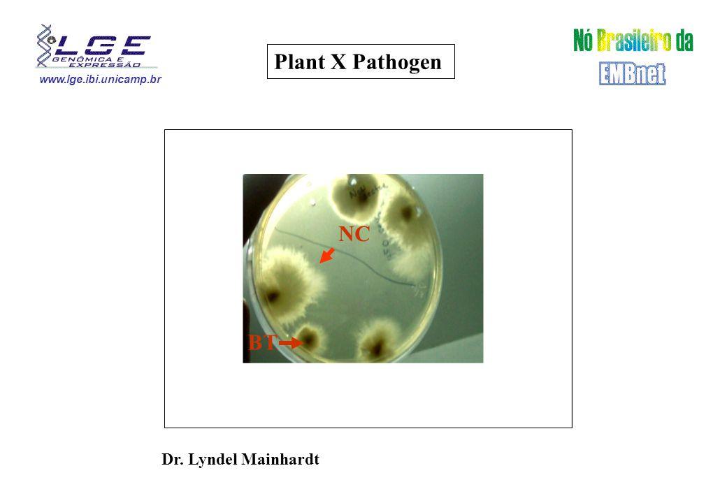 www.lge.ibi.unicamp.br Dr. Lyndel Mainhardt Plant X Pathogen BT NC