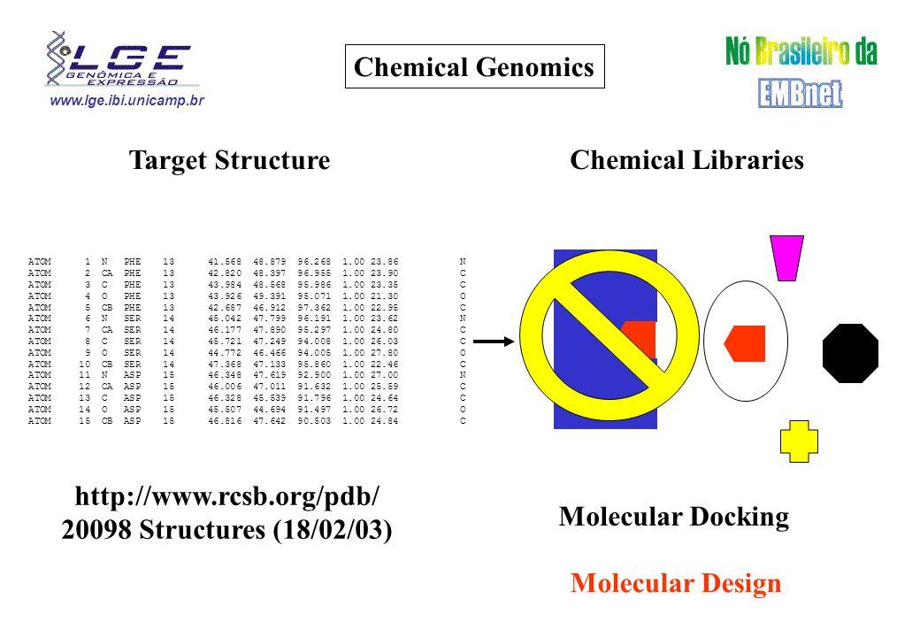 www.lge.ibi.unicamp.br Chemical Genomics ATOM 1 N PHE 13 41.568 48.879 96.268 1.00 23.86 N ATOM 2 CA PHE 13 42.820 48.397 96.955 1.00 23.90 C ATOM 3 C