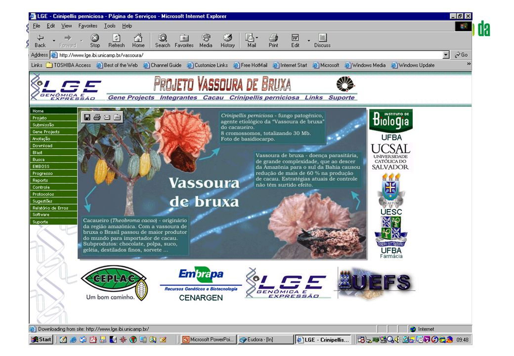 www.lge.ibi.unicamp.br www.lge.ibi.unicamp.br/vassoura Homepage
