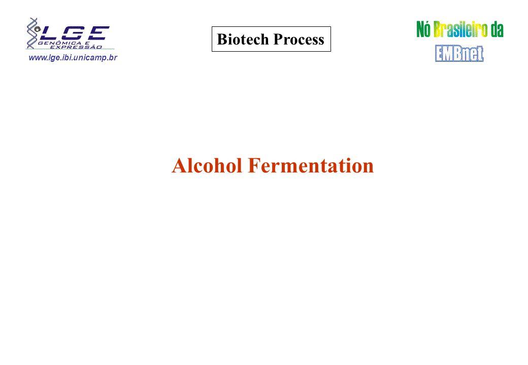 www.lge.ibi.unicamp.br Biotech Process Alcohol Fermentation