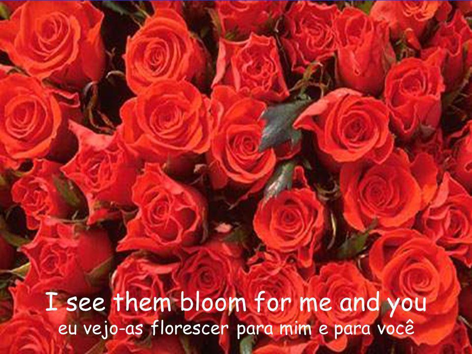 I see them bloom for me and you eu vejo-as florescer para mim e para você