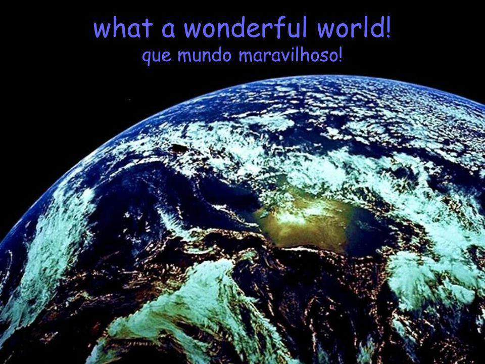 what a wonderful world! que mundo maravilhoso!