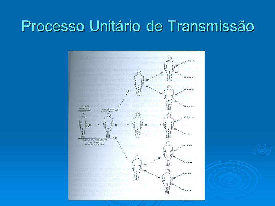 Processo Unitário de Transmissão