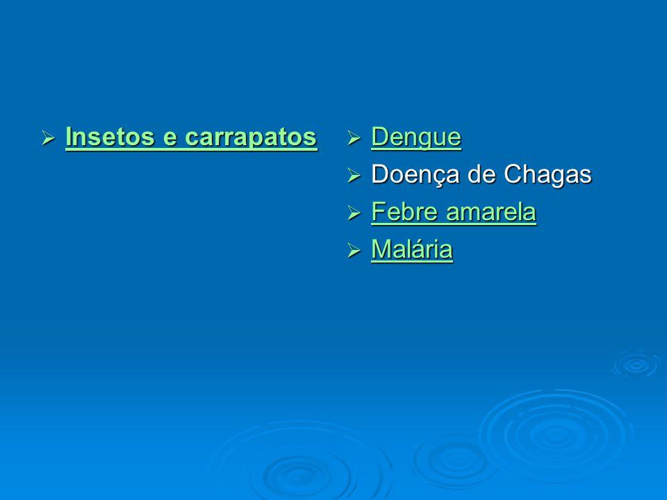  Insetos e carrapatos Insetos e carrapatos Insetos e carrapatos  Dengue Dengue  Doença de Chagas  Febre amarela Febre amarela Febre amarela  Malária Malária