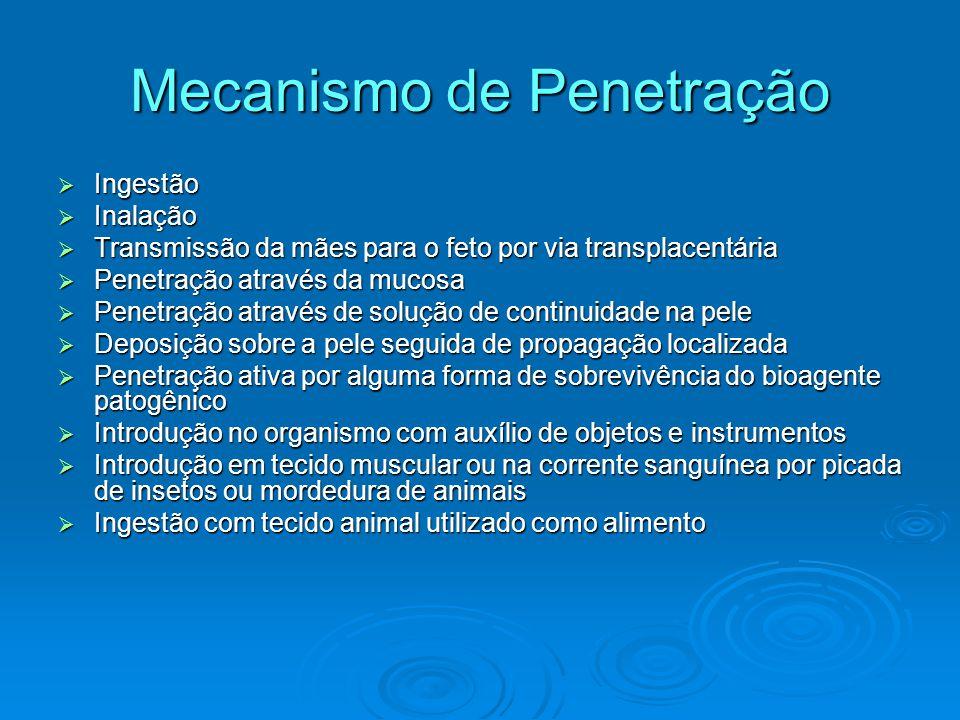 Mecanismo de Penetração  Ingestão  Inalação  Transmissão da mães para o feto por via transplacentária  Penetração através da mucosa  Penetração a