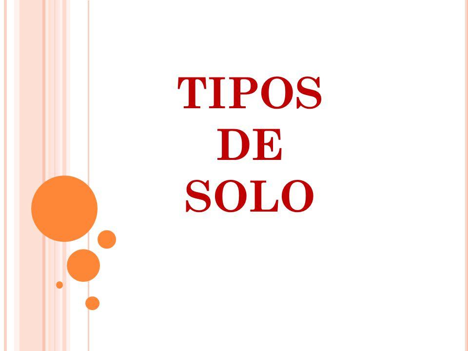 TIPOS DE SOLO