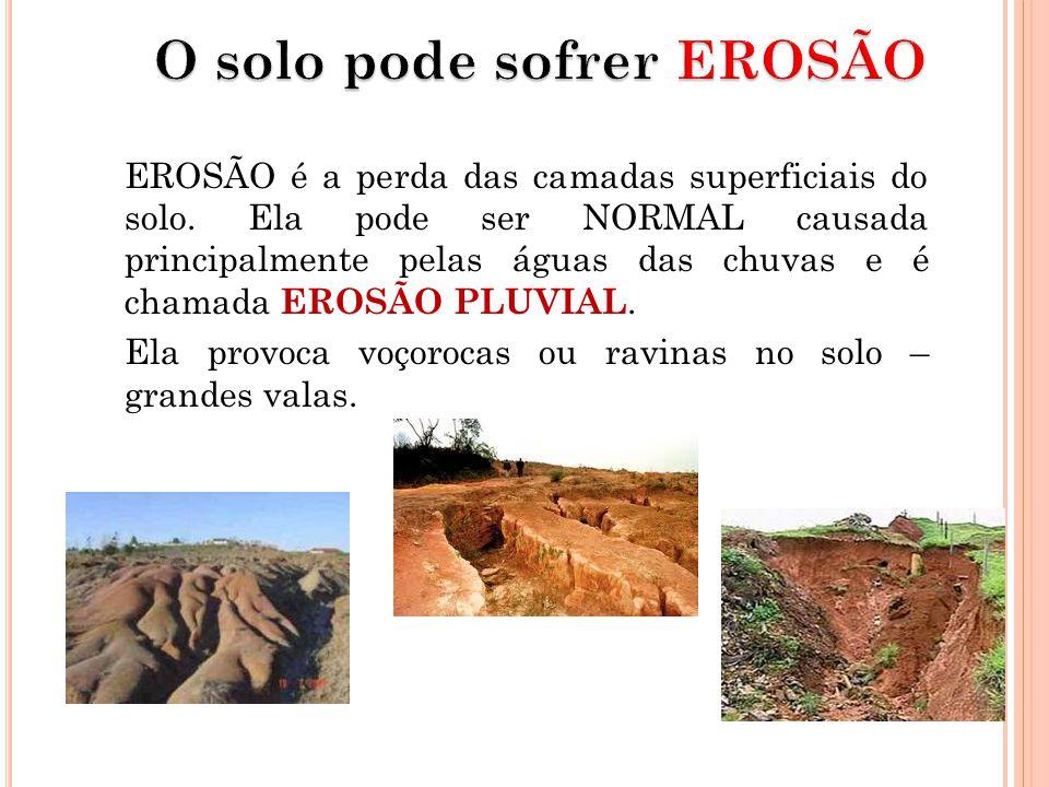 EROSÃO é a perda das camadas superficiais do solo. Ela pode ser NORMAL causada principalmente pelas águas das chuvas e é chamada EROSÃO PLUVIAL. Ela p