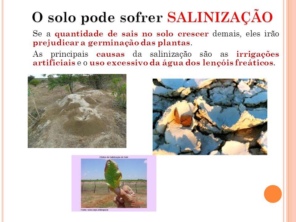 Se a quantidade de sais no solo crescer demais, eles irão prejudicar a germinação das plantas. As principais causas da salinização são as irrigações a