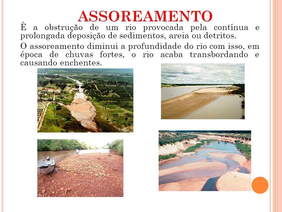 È a obstrução de um rio provocada pela contínua e prolongada deposição de sedimentos, areia ou detritos. O assoreamento diminui a profundidade do rio
