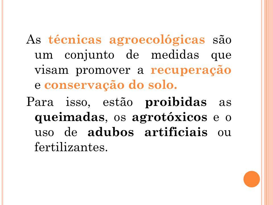 As técnicas agroecológicas são um conjunto de medidas que visam promover a recuperação e conservação do solo. Para isso, estão proibidas as queimadas,