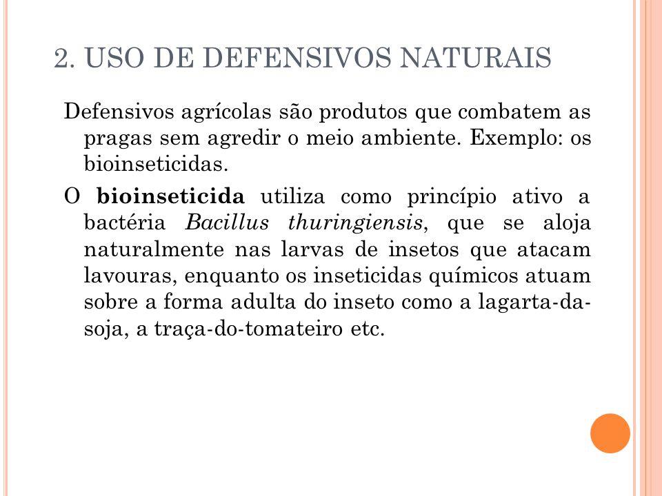 2. USO DE DEFENSIVOS NATURAIS Defensivos agrícolas são produtos que combatem as pragas sem agredir o meio ambiente. Exemplo: os bioinseticidas. O bioi