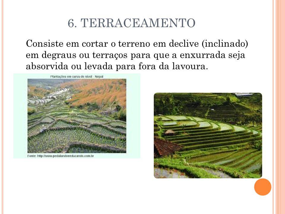 6. TERRACEAMENTO Consiste em cortar o terreno em declive (inclinado) em degraus ou terraços para que a enxurrada seja absorvida ou levada para fora da