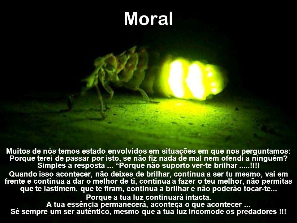 Moral Muitos de nós temos estado envolvidos em situações em que nos perguntamos: Porque terei de passar por isto, se não fiz nada de mal nem ofendi a ninguém.