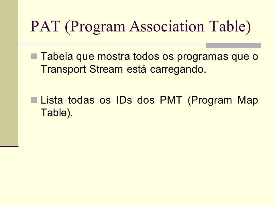 PAT (Program Association Table) Tabela que mostra todos os programas que o Transport Stream está carregando. Lista todas os IDs dos PMT (Program Map T