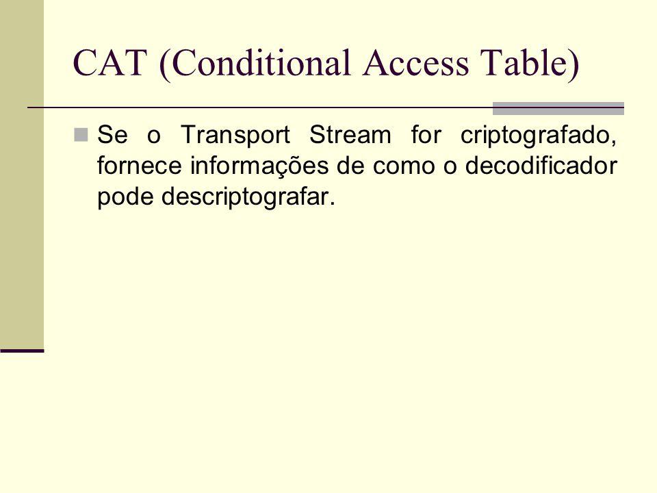 CAT (Conditional Access Table) Se o Transport Stream for criptografado, fornece informações de como o decodificador pode descriptografar.