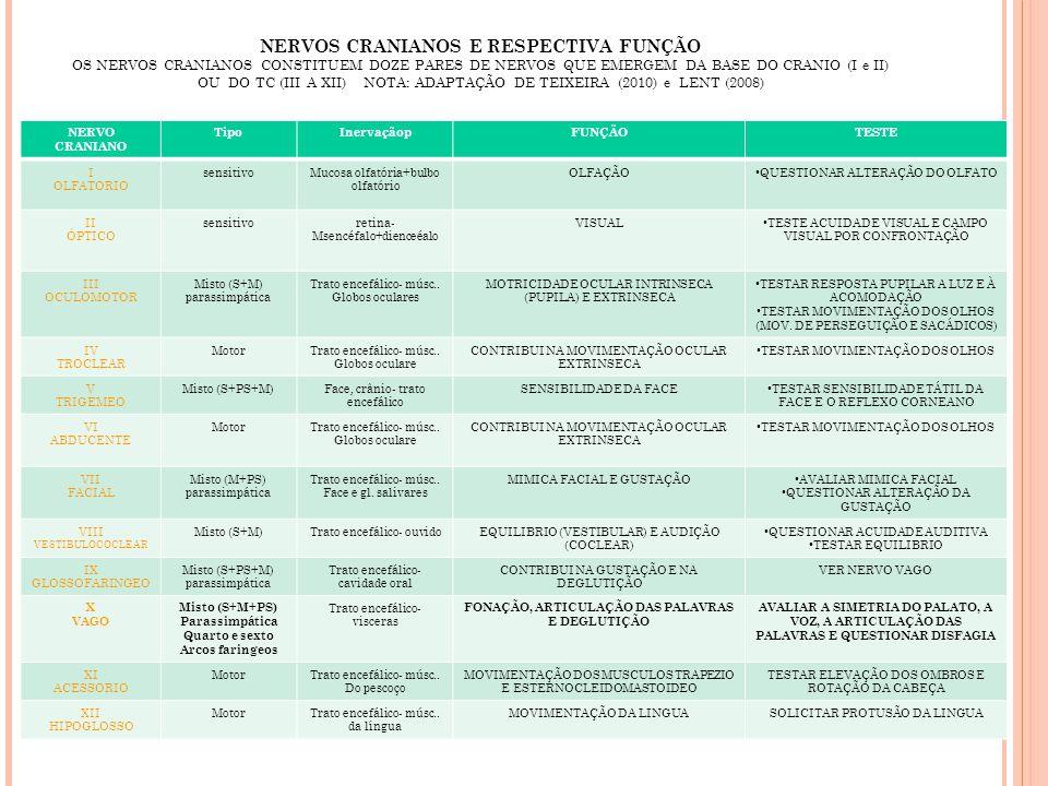 NERVOS CRANIANOS E RESPECTIVA FUNÇÃO OS NERVOS CRANIANOS CONSTITUEM DOZE PARES DE NERVOS QUE EMERGEM DA BASE DO CRANIO (I e II) OU DO TC (III A XII) N