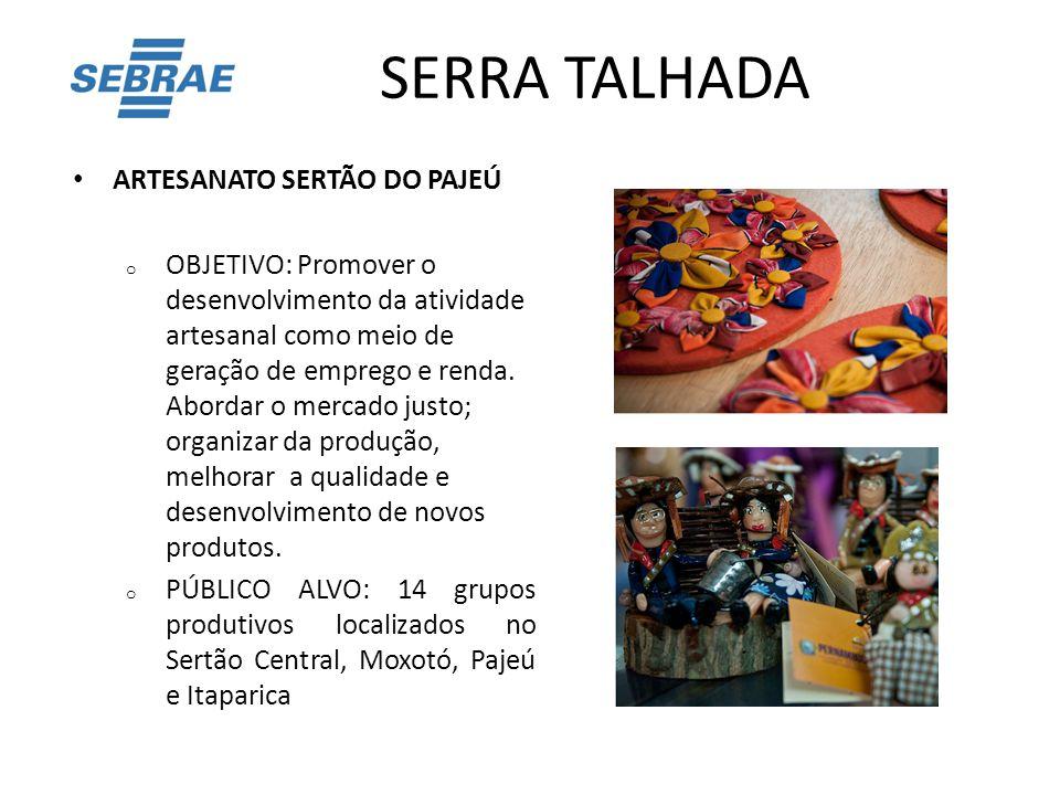 SERRA TALHADA ARTESANATO SERTÃO DO PAJEÚ o OBJETIVO: Promover o desenvolvimento da atividade artesanal como meio de geração de emprego e renda. Aborda