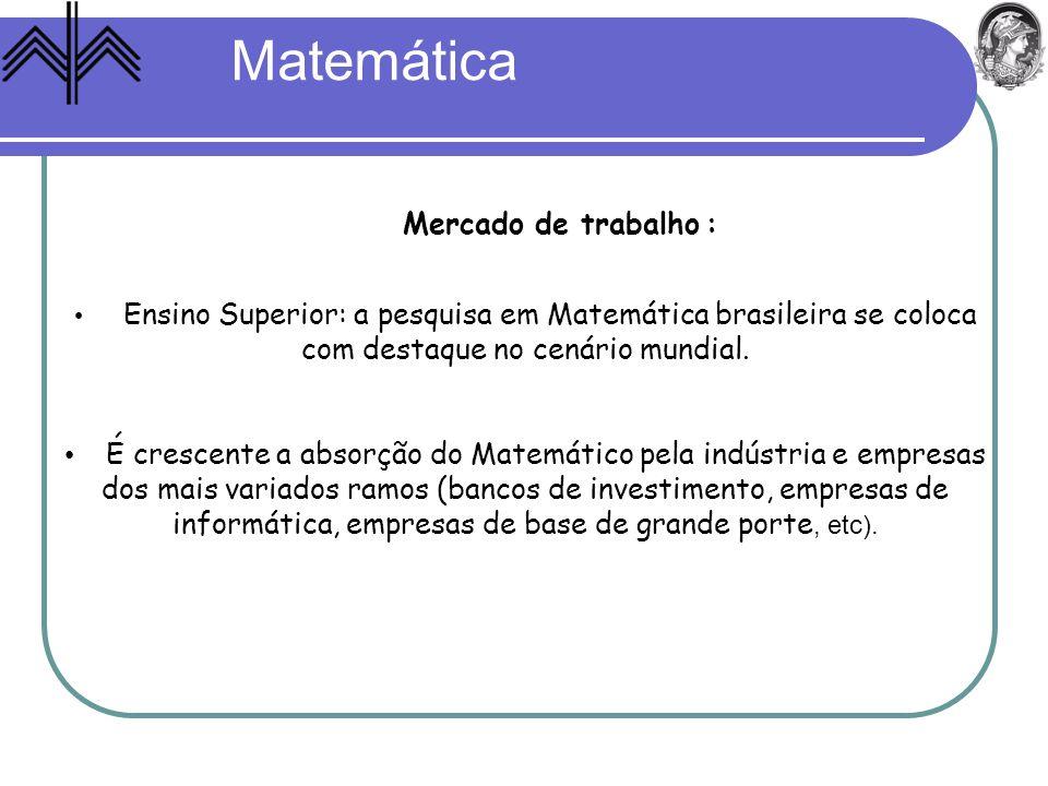 Ensino Superior: a pesquisa em Matemática brasileira se coloca com destaque no cenário mundial. É crescente a absorção do Matemático pela indústria e