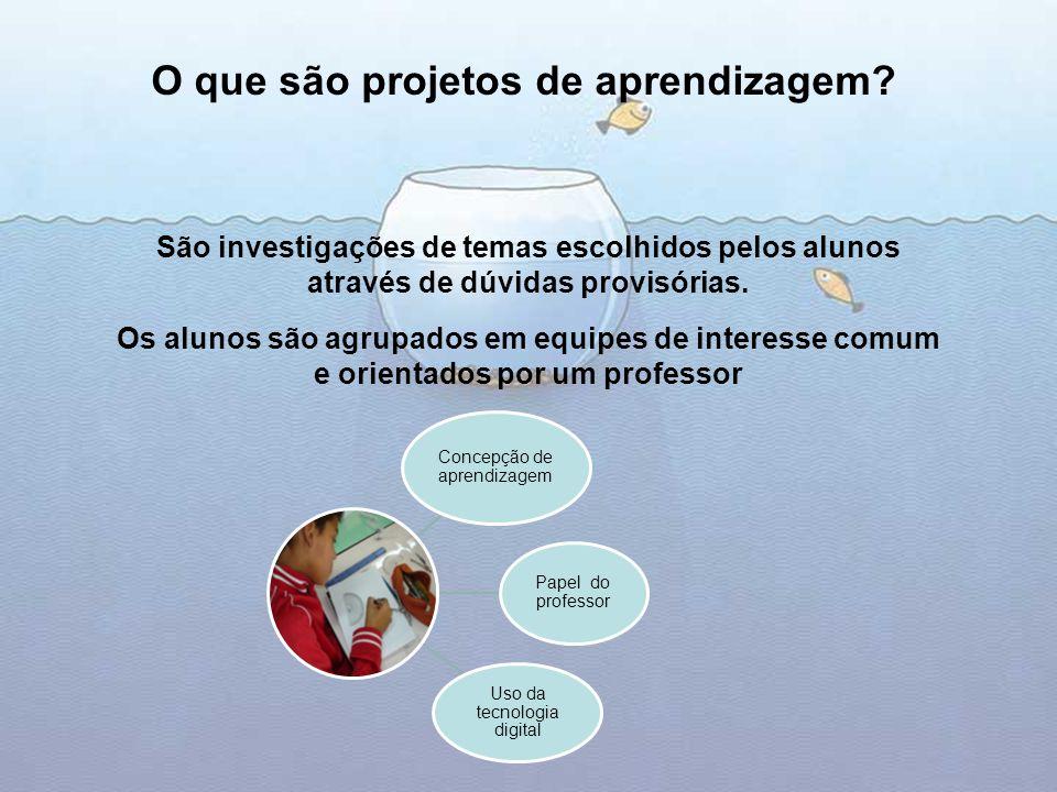 São investigações de temas escolhidos pelos alunos através de dúvidas provisórias. Os alunos são agrupados em equipes de interesse comum e orientados