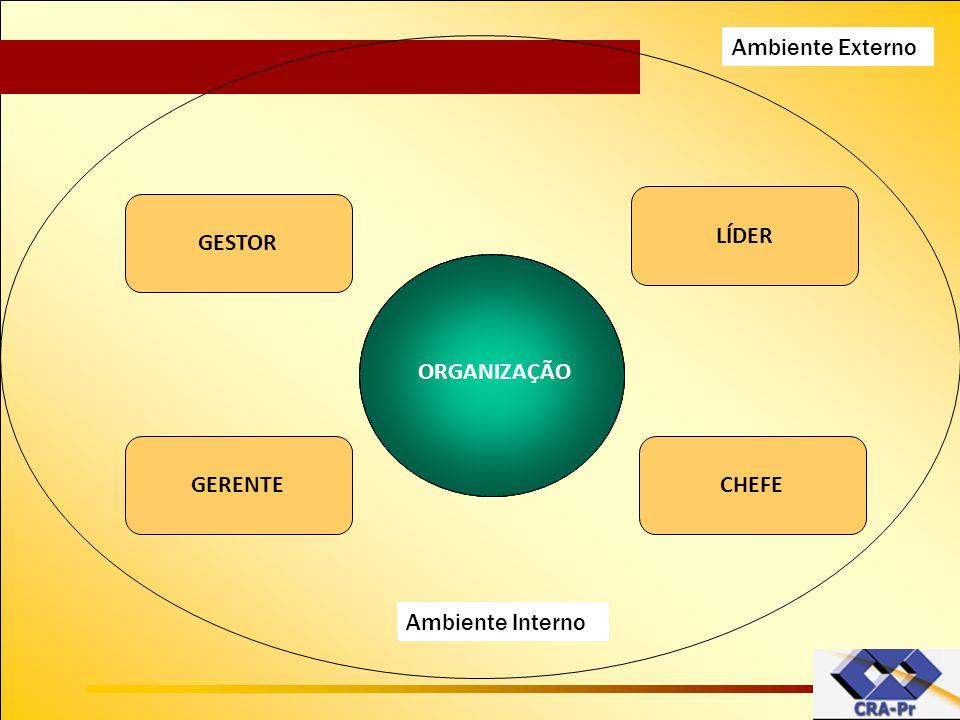 Organização RHFINANÇAS MARKETINGPRODUÇÃO ORGANIZAÇÃO GERENTECHEFE GESTOR LÍDER Ambiente Interno Ambiente Externo