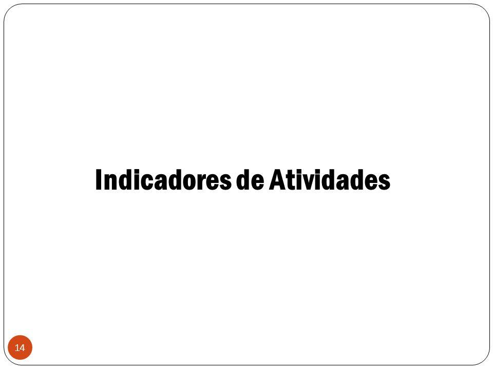 14 Indicadores de Atividades
